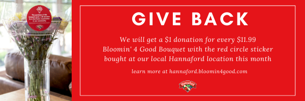 Hannaford B4G NP Email Banner Ad 1 - UPDATED