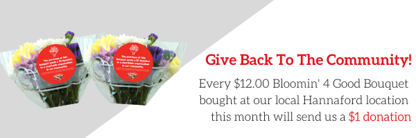 Hannaford - B4G NP Email Banner Ad 3 - Generic